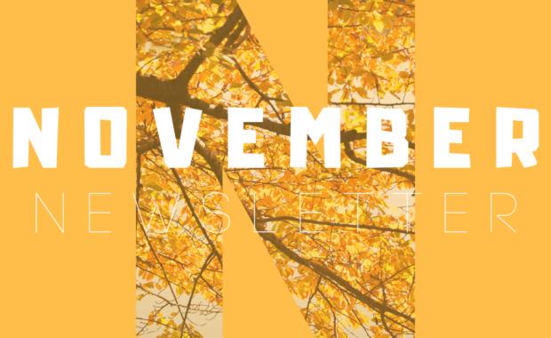 November Newsletter 🍁